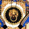 Pull sweat ZOOM FLIGHT lion motif